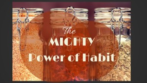 The Mighty Power of Habit – The Kitchen of a Minneapolis Marriage Counselor